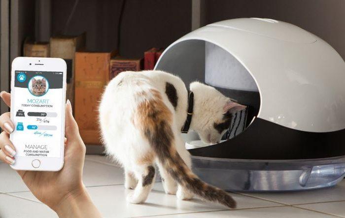 Des innovations pour vos animaux